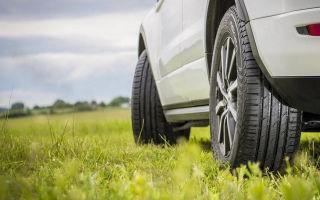 Летняя резина для легкового авто: правила и особенности выбора