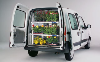 Доставка цветов автотранспортом: особенности перевозки